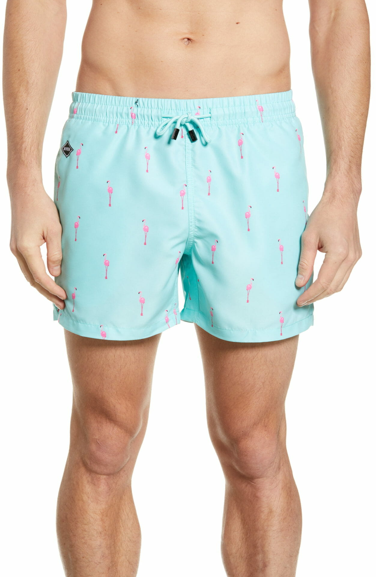 NIKBEN Flamingo Vice Swim Trunks, Main, color, GREEN