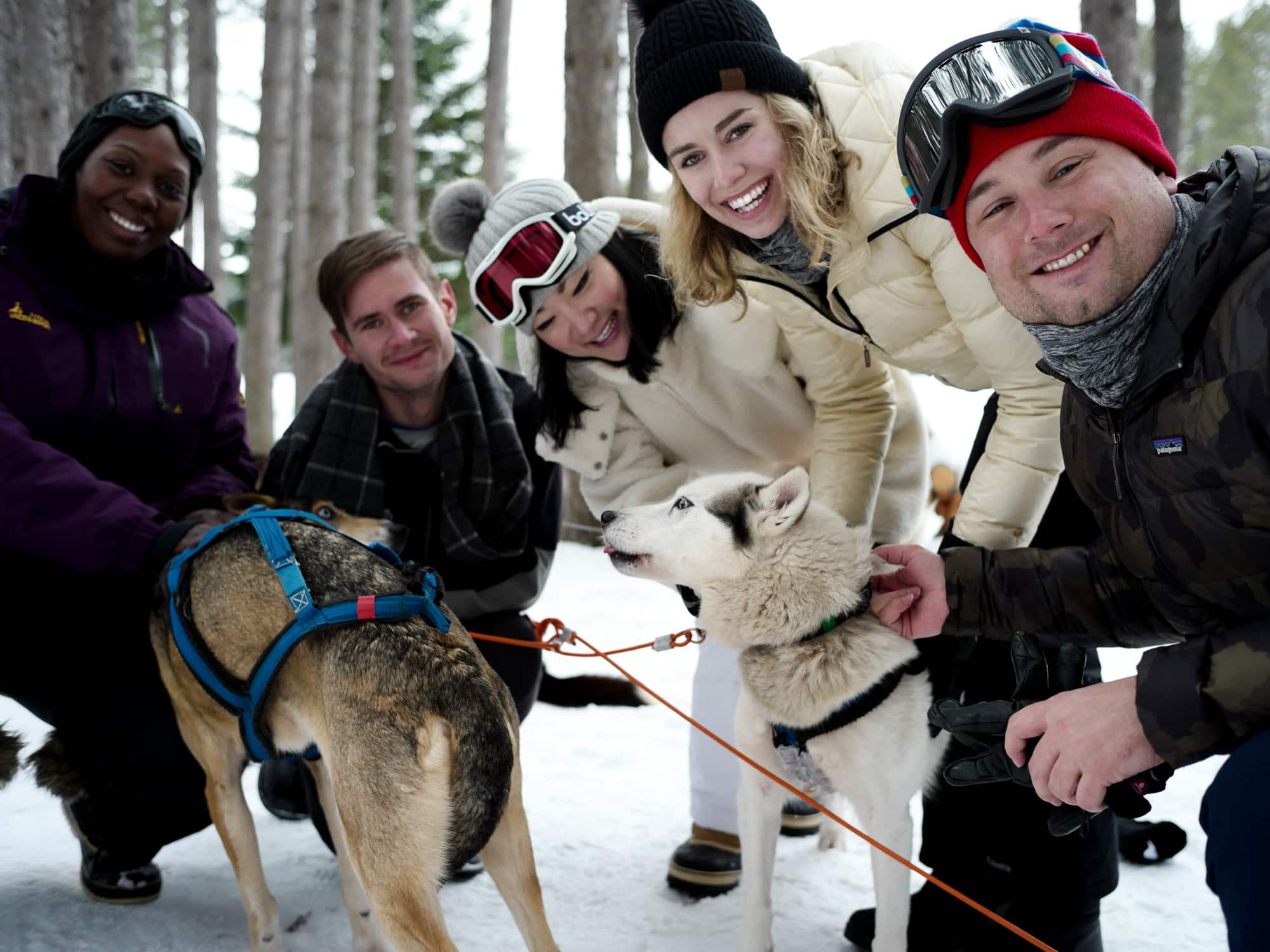 A day spent dog sledding with friends while in Canada.