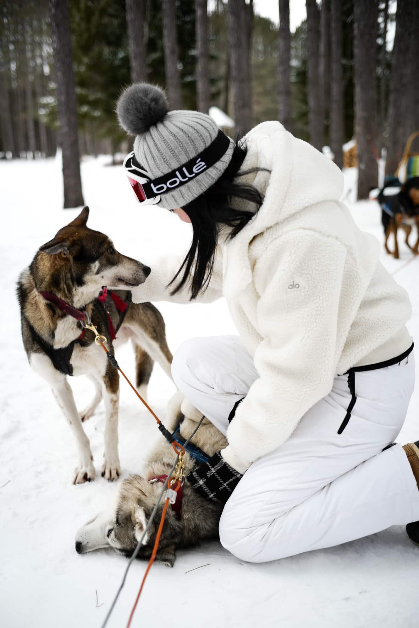 dog sledding winter activites