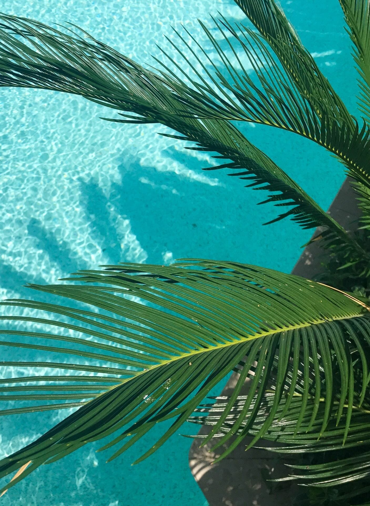 retreats spas luxury wellness
